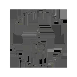 Logo Raquel Flores